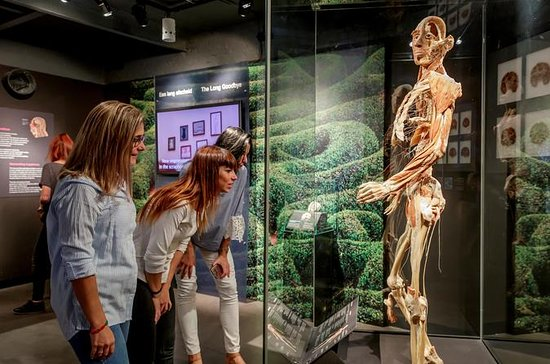 Amsterdam Super Saver: Body Worlds ...