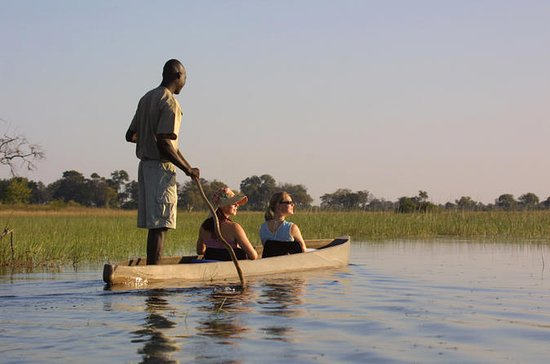 9-dages Safari Tour: Okavango Delta...