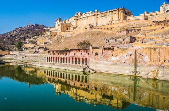 Amazing Amber Fort Admission Ticket ...