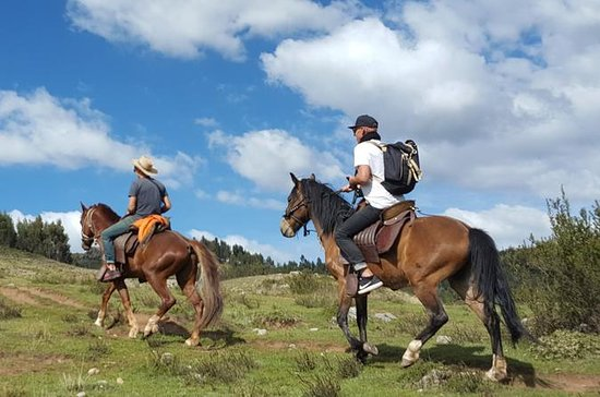 Horseback Riding thru the mountains...