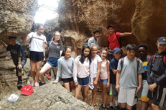 Stone Forest Day Tour