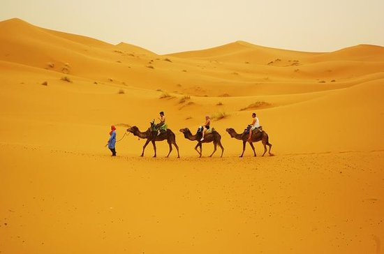 Family Tour in Morocco from...