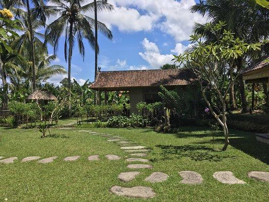 Umah Padi Bali Cooking Class