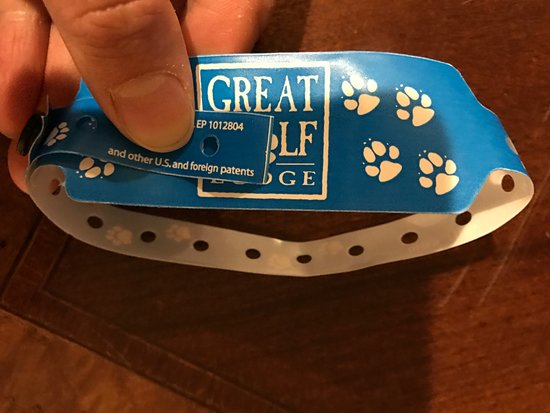 Great Wolf Lodge: the wristband with sharp edges