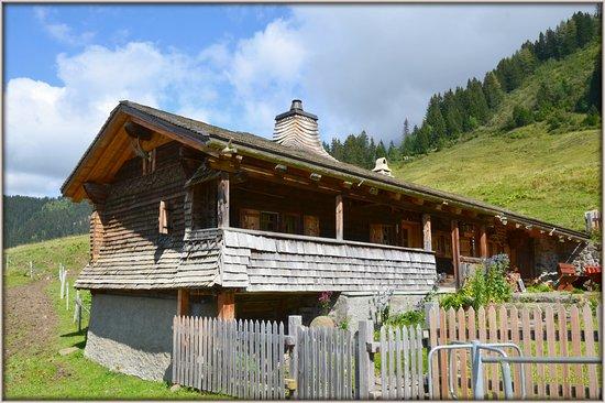 Gryon, İsviçre: Ma ''Cabane'' à Taveyannaze