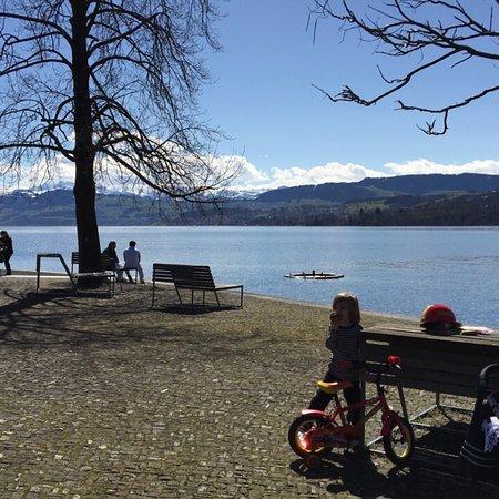 Horgen, Suiza: photo4.jpg