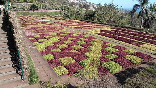 Madeira Botanical Garden: Uma Das Partes