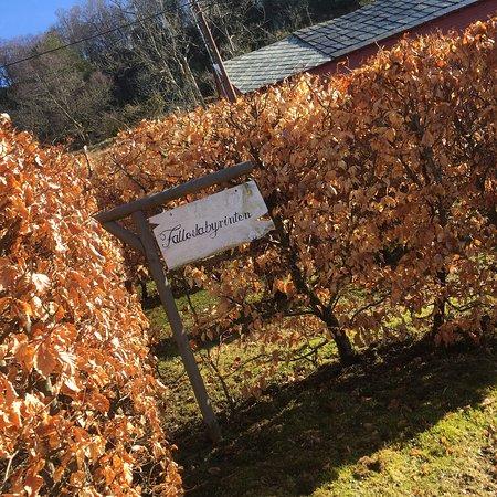 Tysnes, Norge: photo2.jpg