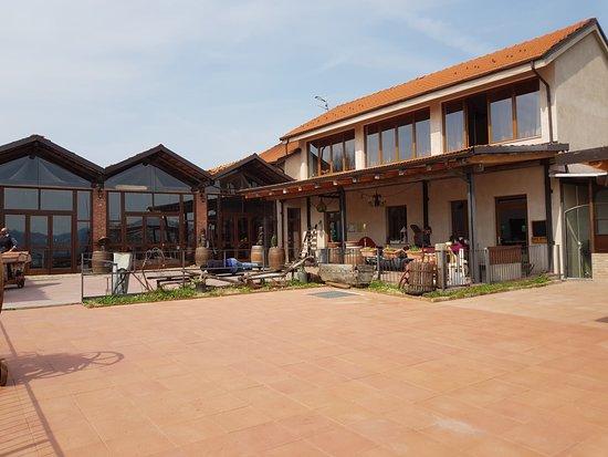 Strevi, إيطاليا: Il locale