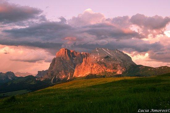 Goldknopf alpine lifestyle hotel bewertungen fotos for Lifestyle hotel sudtirol