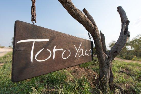 Toro Yaka Bush Lodge Picture
