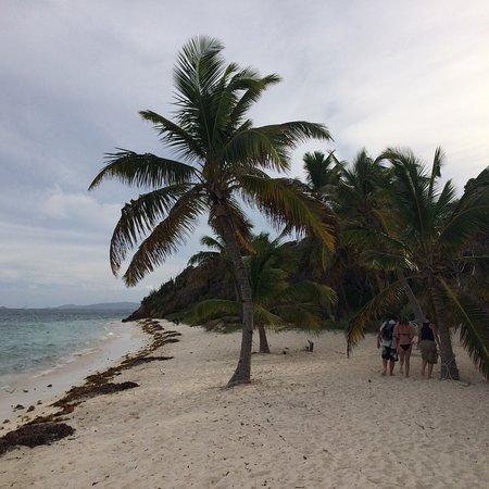 Tobago Cays: Magnifique îles des Caraïbes.