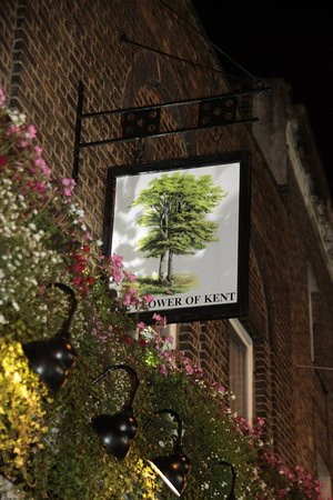 The Flower of Kent