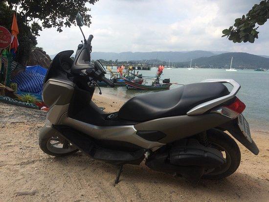 location de scooter à Koh Samui : louer un scouter à Chaweng, Maenam, Bophut, Fisherman. PCX, Nm
