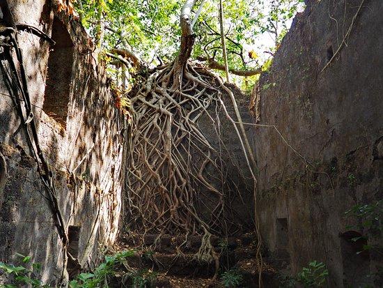 Yashwantgad Fort (Redi Fort)