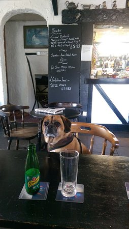 Nelson, UK: Dog Friendly in the Bar - great to stop mid may while walking!