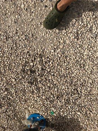 Joal Fadiouth, Senegal: Il suolo formato da conchiglie