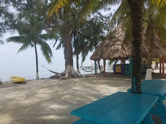 South Water Caye, Belize: 20180408_131051_large.jpg
