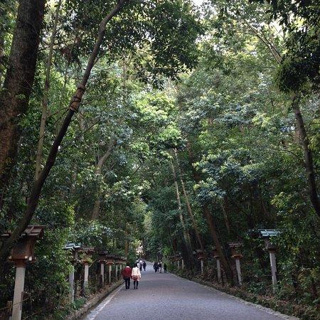 Omiwa Shrine: photo2.jpg