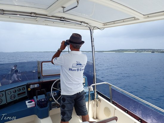 Mare Cruise : On board of Splash 2