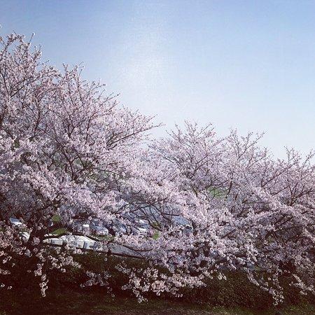 Nogata, Japan: photo2.jpg