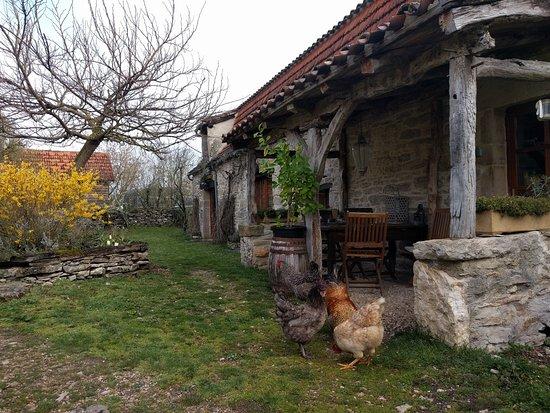 Calvignac Foto