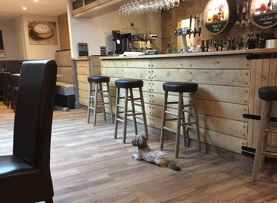 The Apple Inn: The bar and doggie friendly area