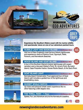 New England EcoAdventures Photo