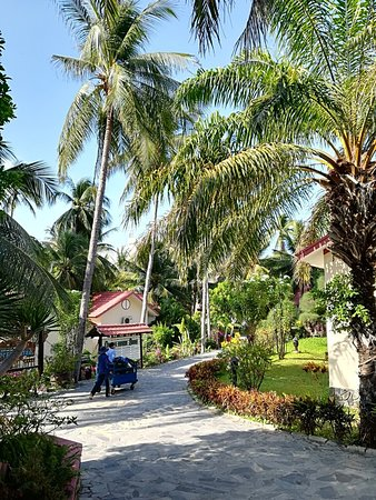 Ocean Star Resort: IMG_20180325_075852_large.jpg
