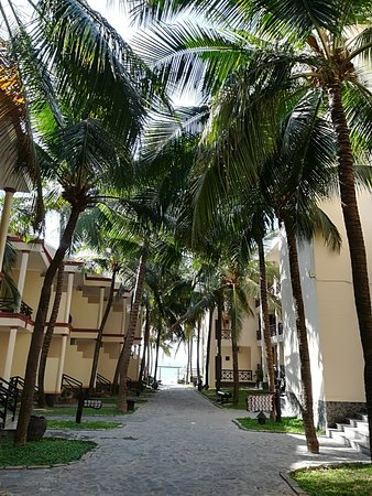 Ocean Star Resort: IMG_20180325_080033_large.jpg