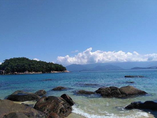 Ilha dos couves
