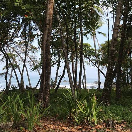 Pavones, كوستاريكا: photo1.jpg