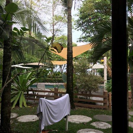 Pavones, Costa Rica: photo5.jpg