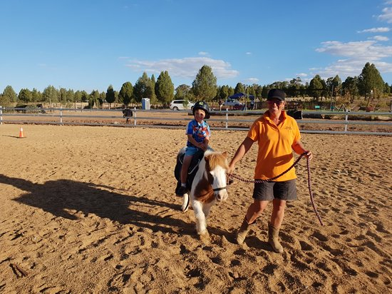 Outback Pony Rides