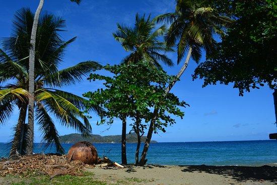Speyside, Tobago: beach view