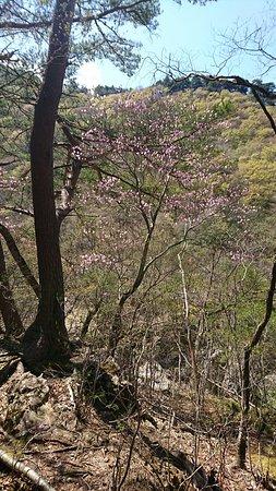 Ryuokyo Canyon – fénykép