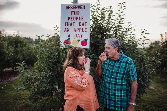 Fennville, MI: An apple a day...