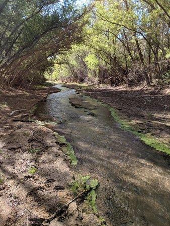 Rio Tierra Casitas : On The Hassayampa River Preserve