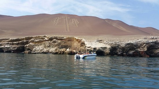 Paracas and Huacachina from Lima with Ballestas Islands and Sand Boarding – fénykép