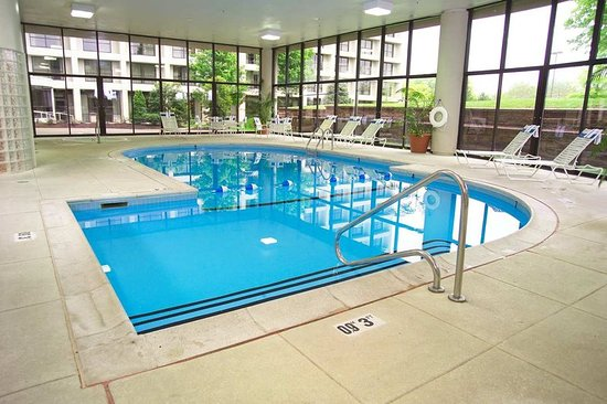 Hilton St. Louis Airport : Pool