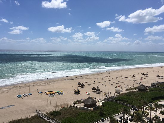 Fort Lauderdale Marriott Harbor Beach Resort Spa Ft View From
