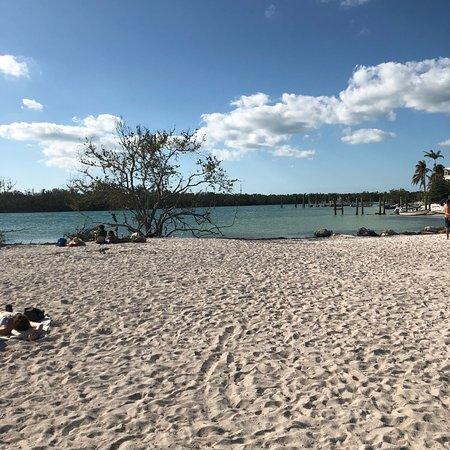 Sombrero Beach Dog Friendly
