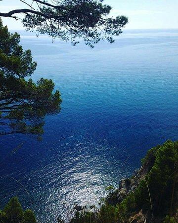 Montecorice, Italie : B&B La Rosa e La Perla
