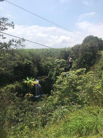 Honomu, HI: Skyline Eco Zip Line - Akaka Falls