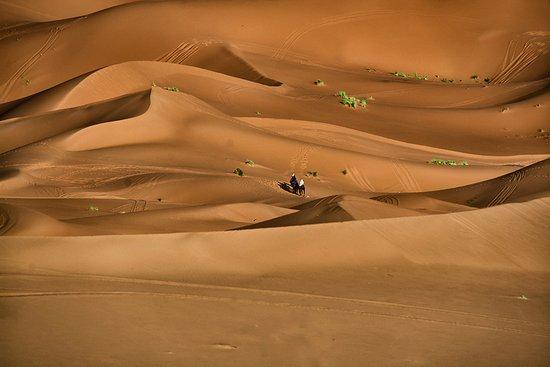 Kasbah Des Dunes照片