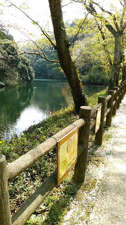 Sazagaike Shinrin Park