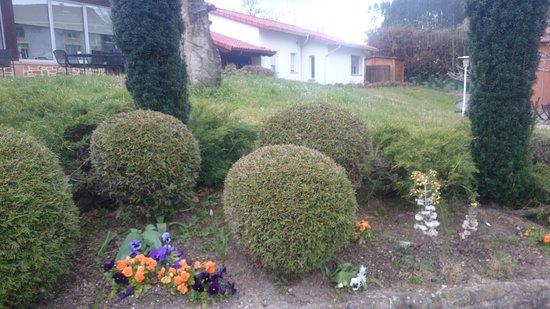 Artzentales, España: Es el jardín y la zona de acceso a las habitaciones.