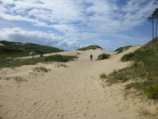 Newborough Warren & Ynys Llanddwyn: Endless sandy beach with dunes