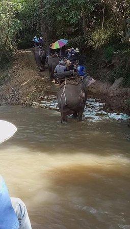 ปางช้างแม่แตง: Elephant Ride across the river