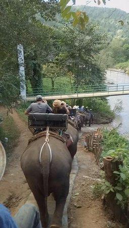 ปางช้างแม่แตง: Down the steep hill